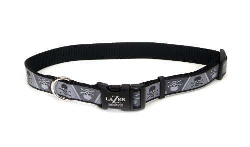Lazer Brite Reflective Dog Collar, 18-26-Inches, Skull and Cross Bones, My Pet Supplies