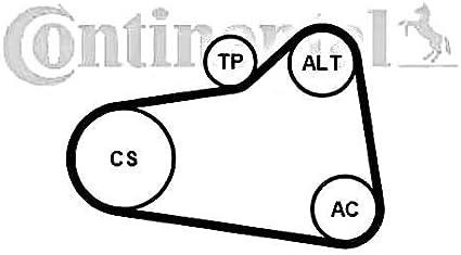 Contitech 6PK905 EXTRA K1 KIT COURROIE MULTI V