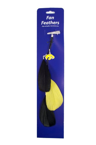 NCAA Iowa Hawkeyes Feather Hair Clip