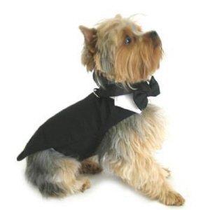 DOGGIE DESIGN Black Dog Harness Tuxedo w/Tails, Bow Tie, and Cotton Collar (Medium)