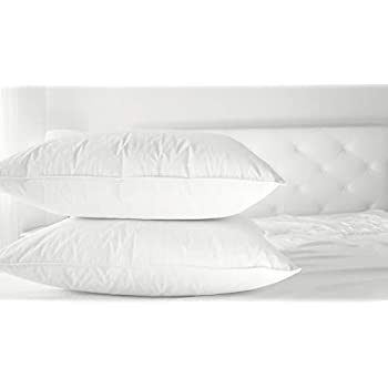 Amazon Com Cluster Fiber Pillow Set Of Two White Down
