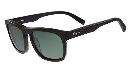 Salvatore Ferragamo SF789SP 214 55mm Havana Green - Sunglasses Ferragamo Men's