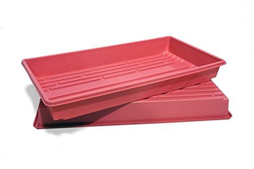10x20 seed trays - 9