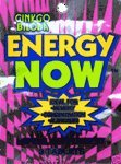 Ginkgo Biloba Energy Now 144 Count