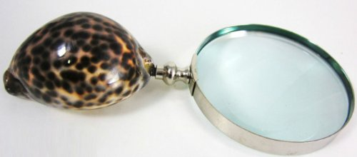 Cowrie Cowry Shell Handle Decorative Magnifying Glass ()