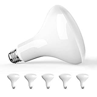 Amico 6 Pack BR40 LED Bulb 13W=100W, 5000K Daylight, 1050 LM, E26 Base, Dimmable, Indoor Flood Light for Cans - UL
