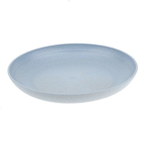 Baosity Dinnerware Plate Dish Round 20cm Steak Vegetables Fruits Bread Plates Food Cake Dishes Outdoor Dining Tool - Blue, 20cm