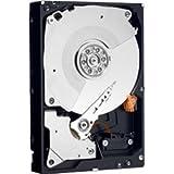 WD Caviar Black WD5001AALS - Hard Drive - 500 GB - SATA-300 (96753M) Category: Zip Drives