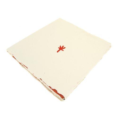 Handmade Paperback book. Square 20cm x 20cm. [Toy]