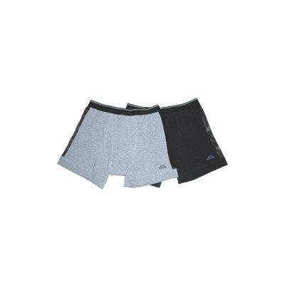 田口式健康良品 スーパーエレガンス (女性用) グレー (灰色) Lサイズ B008MJ03Q2 グレー(灰色) Lサイズ