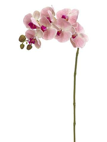 47ab2097da Floral Home Real Touch Phalaenopsis Orchid Spray in Pink Cream - 37