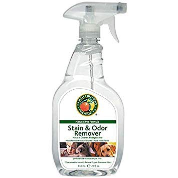 (Earth Friendly Products - Petastic Stain & Odor Remover (22 Ounce Spray) (2-Pack))
