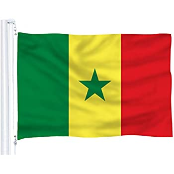 Amazon.com: Senegal Flag 3 x 5 – Banderas Senegal bandera ...