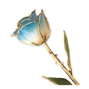 Allmygold Jewelers Long Stem Dipped 24K Gold Trim White & Blue Lacquered Genuine Rose In Gift Box 12