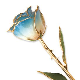 Long Stem Dipped 24K Gold Trim White & Blue Lacquered Genuine Rose In Gift Box
