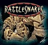 Rattlesnakes, Ted O'Hare, 1595151494