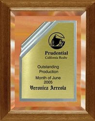9 x 12 Gold Mirror Plaque Engraved with Gold Rolled Plate in Frame by Gino's Awards Inc