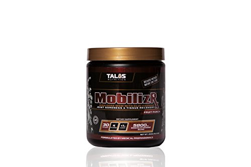 Talos MobilizR || MSM and Glucosamine Joint Formula Powder (Fruit Punch)