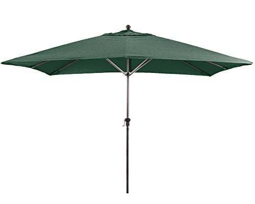 Eclipse Collection 11'X8' Rectangular Aluminum Market Umbrella Bronze/Sunbrella/Forest Green ()