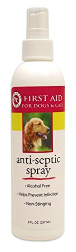 Miracle Care by MiracleCorp/Gimborn R-7 Anti-Septic Spray, 8-Ounce