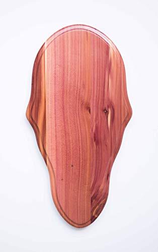 Taxidermists Woodshop Cedar Classic Deer European Skull Mount Face Plate ()