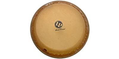 Latin Percussion LP265D 9-Inch Mounted Super Quinto Drum Head from Latin Percussion