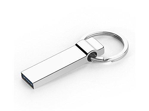 OVIIVO Memory Cases 32GB USB2.0 Memory Stick Thumb Drive Flash Drive Metal Waterproof Shockproof U Disk (Silver) by OVIIVO