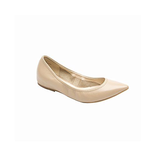 PIC Ana Womens Maple Flat Sugar PAY Pointy Flats Ballet Toe Elastic 1rq15gw