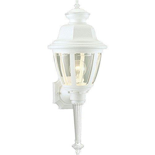 Progress Lighting P5738-30 1-Lt. Wall Lantern Non-Metallic IncandescentCollection 30 Non Metallic Lanterns