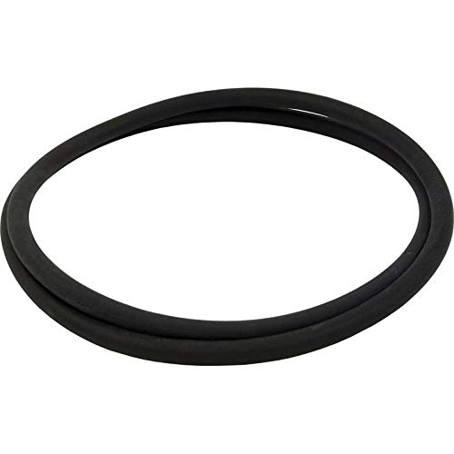 (Pentair 152127 18-Inch O-Ring Tank Replacement Nautilus Pool and Spa D.E.)