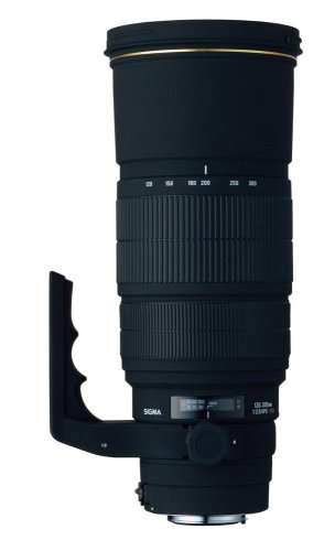 Sigma 120-300mm f/2.8 EX DG IF HSM APO Telephoto Zoom Lens for Canon SLR Cameras