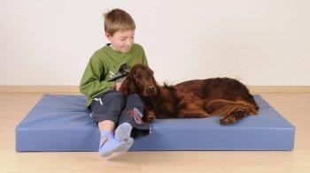 Almohada ortopédica Hundebett perros-cama de agua