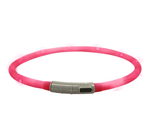 Bow & Arrow USB Rechargeable Light Up Dog Collar for Night Safety with Three Flash Modes, Pink