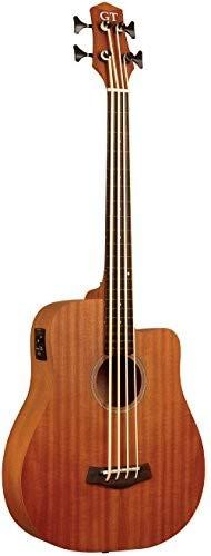Gold Tone M-Bass25/FL Fretless 25.5 Scale Microbass