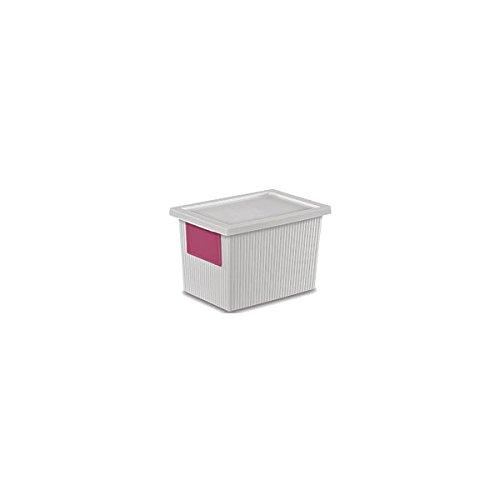 Sterilite 14318006 5.4 Quart ID Box