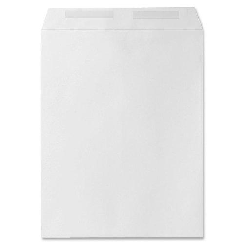 Sparco Catalog Envelope - Sparco Catalog Envelope, Plain, 28lbs, 10 x 13 Inches, 250 per Box, White(SPR09826)