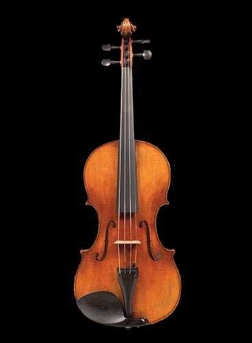 One Piece Back D Z Strad Violin with Bam Case - Model 509 - Maestro Old Spruce Strad with Antique Varnish handmade by our prize winning luthiers [並行輸入品]   B07MH9WLM7