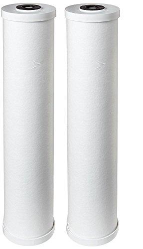 "Pentek RFC20-BB Carbon Filter Cartridge, 20"" x 4-1/2"" (Bundle off of 2)"