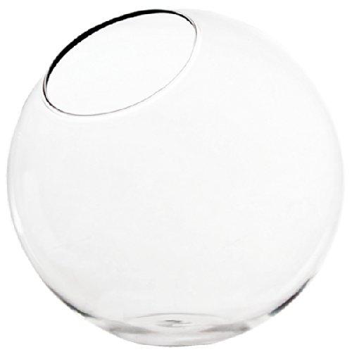 CYS® Plant Terrarium Half Slope Bubble Bowl by CYS (Wholesale Lot of 18 pcs)