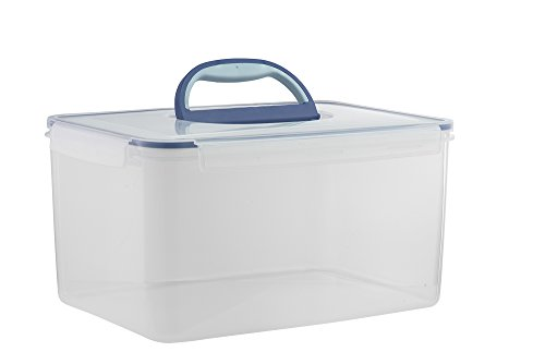 Komax Biokips Big Size Food Storage Container Airtight with Handle Large 48.6 Cup (1 handle, Clear)