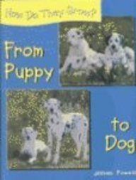 Download From Puppy to Dog (How Do They Grow?) pdf epub
