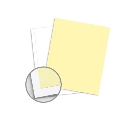 250 Sets, NCR Paper, 5887, Collated 2 Part (White, Canary), Letter Size Carbonless Paper Appleton