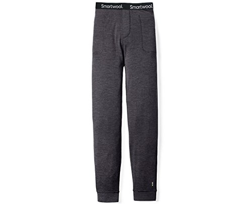 SmartWool Men's Merino 250 Jogger Bottoms Charcoal X-Large 29