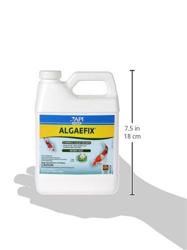 API POND ALGAEFIX Algae Control Solution 32-Ounce Bottle