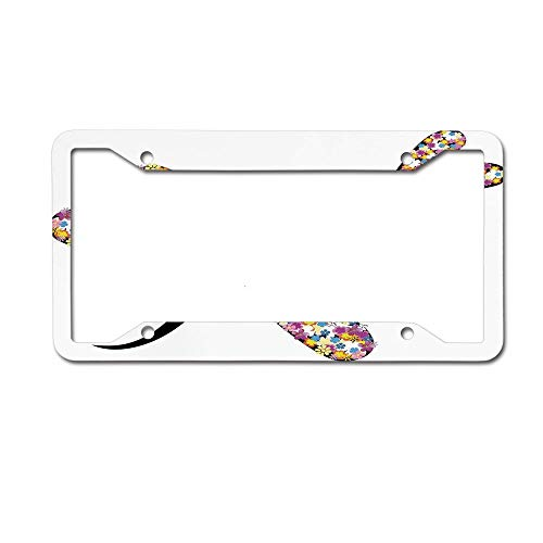 huizehonghong Butterfly Dragonflies with Colorful Alluring Wings and Black License Plate Frame - Aluminum License Plate Frame, License Tag Holder,Auto Frame Cover