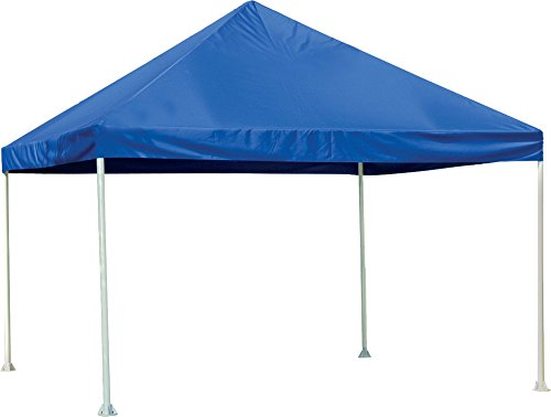 ShelterLogic Celebration Canopy, Blue, 20 x 20 ft.