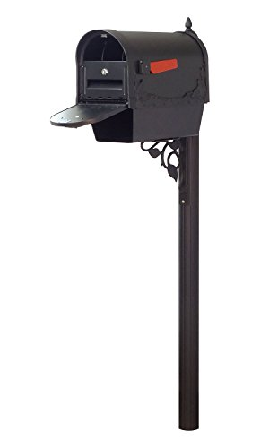 Special Lite Products Company Floral Curbside Mailbox With Newspaper Tube, Locking Insert And Albion Mailbox (Special Lite Floral Curbside Mailbox)