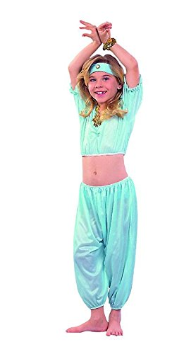 Rg_costumes Unisex Adult Aladin Princess- Agua , Lrg Black (Adult Aladin Costumes)