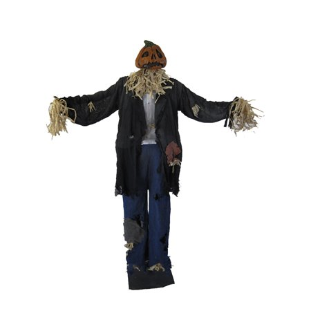 [Costumes For All Occasions Pe42025 Scarecrow Man Standing 60In] (Male Scarecrow Costume)