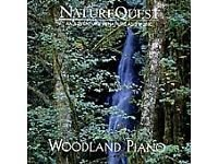 Woodland Piano - Outlet The Woodlands